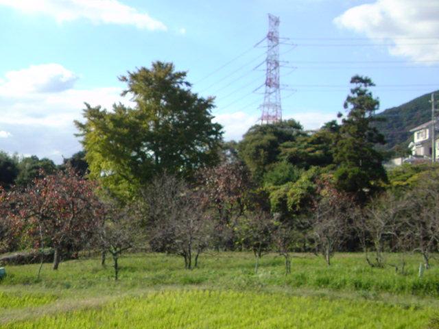 北九州道場も秋