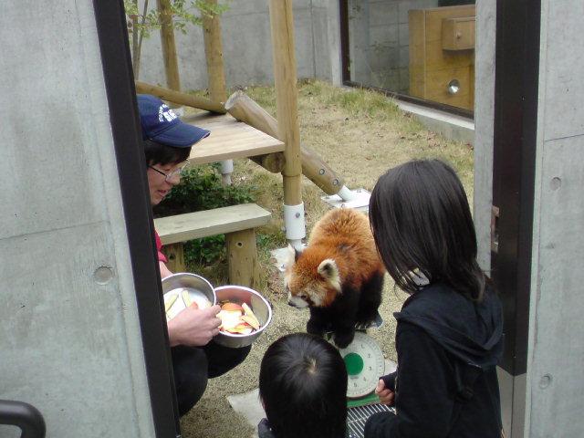 到津の森公園 その2